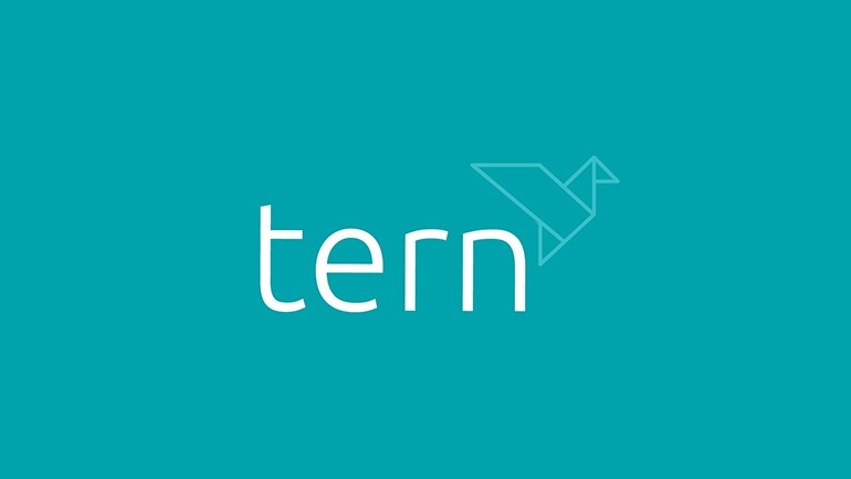 Introduction to Tern video