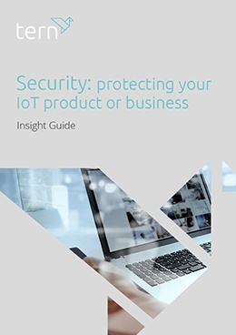 Security: protecting your IoT product or business